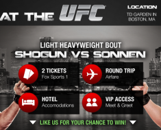 "SafeAuto's ""VIP at the UFC"" contest!"