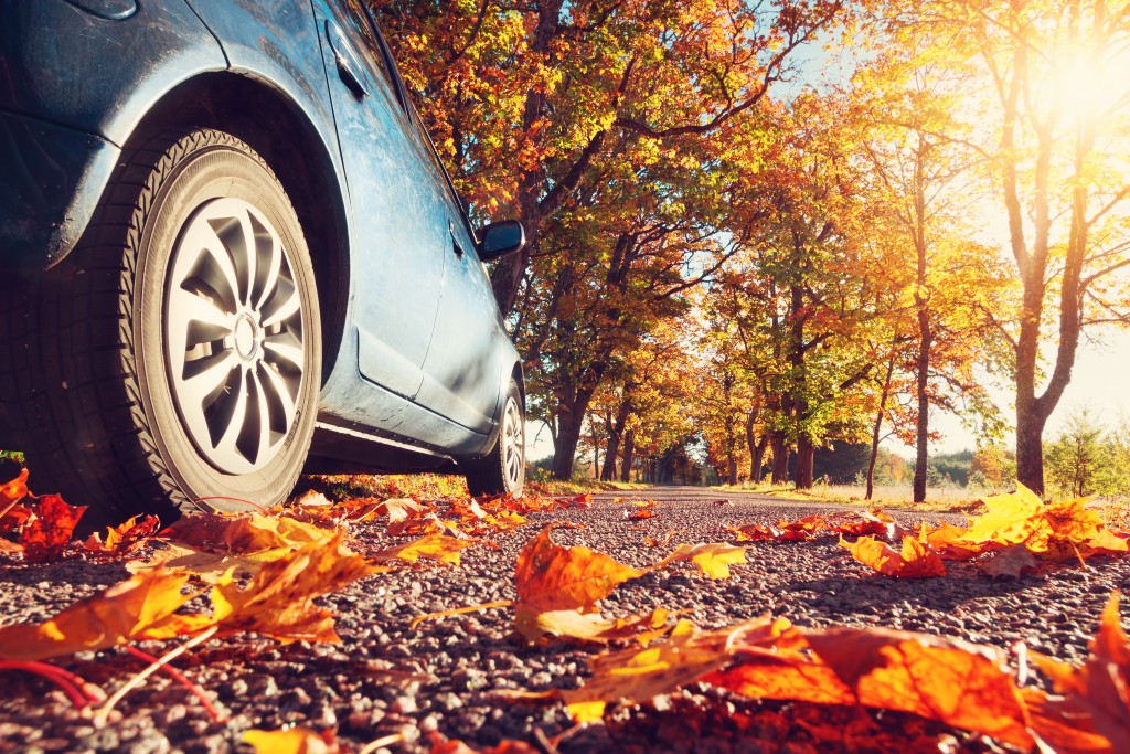 fall driving safety tips